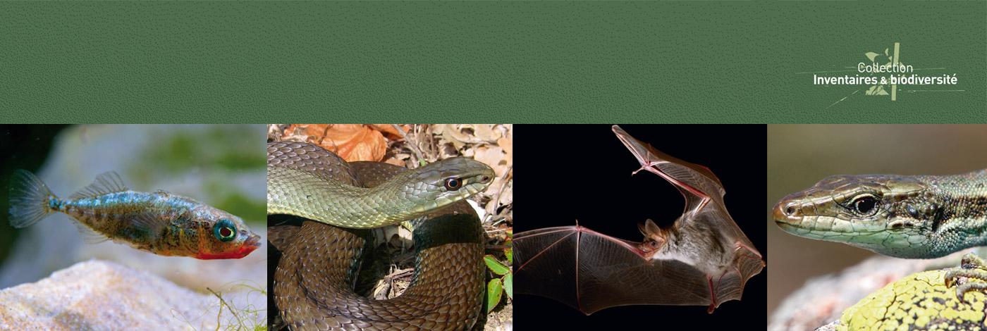 MNHN - Publications scientifiques