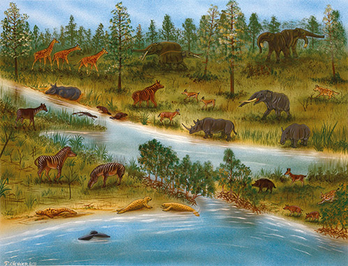 Artist reconstruction of the environment in the Küçükçekmece region with some key elements of its mammalian fauna by François Chevrier (Orléans)