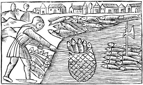 Géographie du hareng à la fin du Moyen Âge: les mers du Nord, des lieux de production?
