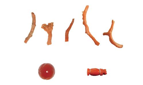 L'exploitation des mollusques et autres invertébrés à Alexandrie (Égypte) de l'époque hellénistique à la fin de l'Antiquité: alimentation, utilisation et commerce