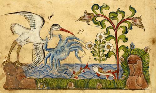 La classification des animaux sauvages chez un naturaliste et médecin du X<sup>e</sup>siècle Aḥmad Ibn Abī al-Ašʿaṯ