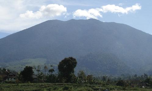 Les deux visages du mont Gede, Java – Richesse en espèces, composition et zonation des bryophytes épiphytes