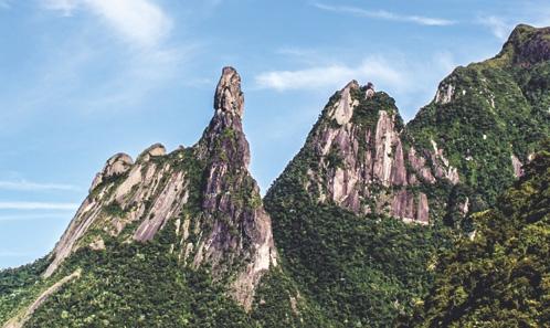 Bryophytes des collections historiques de Glaziou: revisiter la flore de Rio de Janeiro et ses implications pour la conservation.