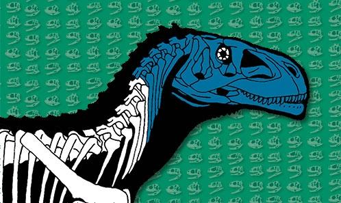 Un dinosaure théropode du Crétacé inférieur du Brésil met en lumière l'évolution crânienne des Abelisauridae