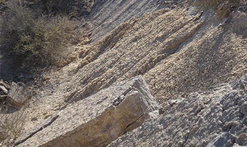 Biofaciès à conodontes ordoviciens de la partie supérieure de la formation La Silla et de la formation SanJuan (Trémadocien moyen-Dapingien inférieur) du Cerro la Silla, précordillère argentine