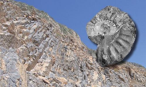 Le Jurassique du Jebel Ressas (Tunisie). Identification du Sinémurien supérieur dans la Formation Zaghouan. Précisions stratigraphiques et paléobiogéographiquessur le Sinémurien de Tunisie