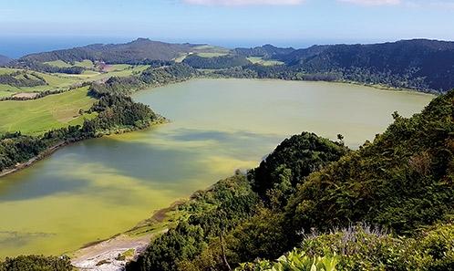 Un examen critique de la distribution des cyanobactéries et de la présence de cyanotoxines dans les îles del'océan Atlantique