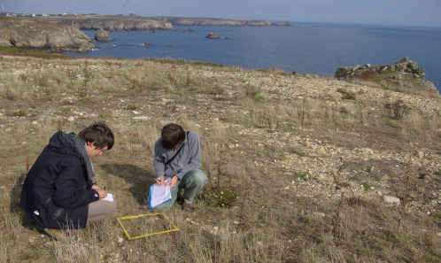 Quelles trajectoires de réhabilitation pour la décharge de l'Île d'Ouessant(29)? Retour sur dix années de recherche-action