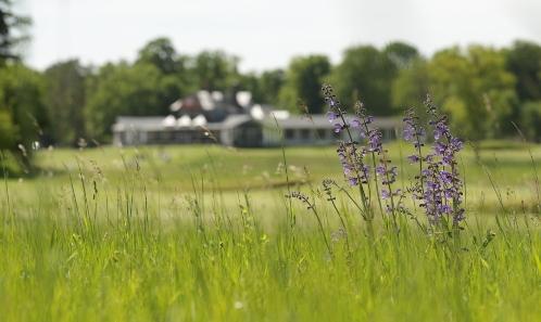 Le golf: activité sportive contre-nature  ou opportunité écologique ?