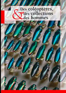 Des coléoptères, des collections et des hommes