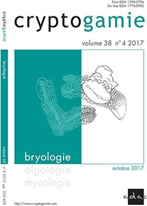 bryo38/4