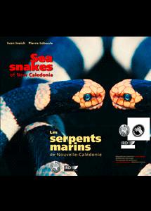 Les serpents marins de Nouvelle-Calédonie