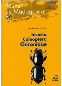Insecta, Coleoptera, Chironidae