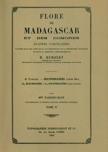 Polypodiaceae (s.lat.) (Blechnaceae-Polypodiaceae) (s.str.)