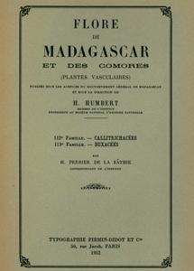 Callitrichaceae, Buxaceae