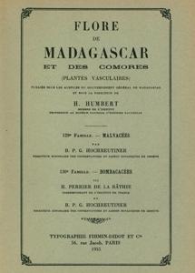Malvaceae, Bombacaceae