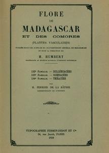 Dilleniaceae, Ochnaceae, Theaceae