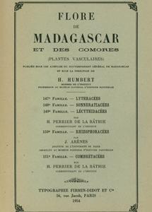 Lythraceae, Sonneratiaceae, Lecythidaceae, Rhizophoraceae, Combretaceae