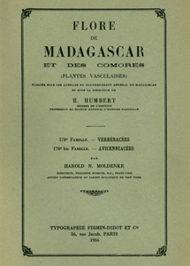 Verbenaceae, Avicenniaceae