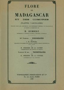 Dioscoreaceae, Trichopodaceae