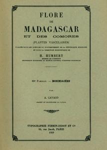 Monimiaceae