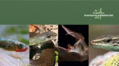 Inventaires & biodiversité